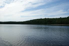 walden essays essay photo essay a stop at walden pond on thoreau s  photo essay a stop at walden pond on thoreau s birthday lettershead and you can look