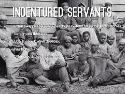 「indentured servant」の画像検索結果