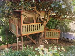 Cool Treehouses For Kids Awesome Simple Tree House Plans Best House Design
