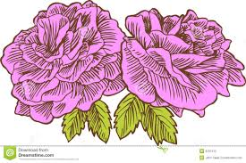 Small Picture Hand Drawn Rose Royalty Free Stock Photo Image 9437415