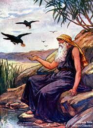 Image result for photo elijah bible