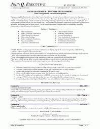 Resume Core Competencies Examples Core competencies resume examples portray runnerswebsite 48