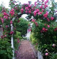 BEAUTIFUL GARDENS CLUB debuts with this... - Beautiful Gardens Club |  Facebook