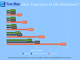 Debunking 21 Myths About Life Insurance True Blue Life