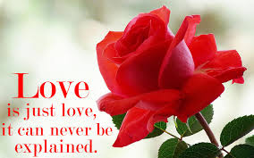 Beautiful Love Wallpaper With Quotes Best Of Nice Love Quotes Wallpaper