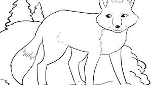 Arctic Fox Coloring Page Arctic Wolf Coloring Page Animal Jam Best