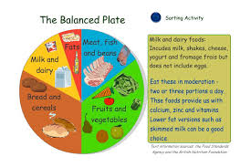 Nutrition Balanced Diet Chart Free Balanced Diet Chart Download Free Clip Art Free Clip