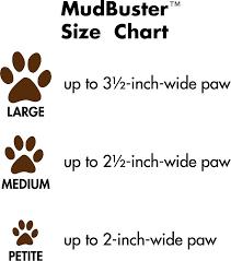 Paw Size In Puppies Goldenacresdogs Com