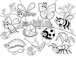 Small Picture Beautiful Insect Coloring Pages Images Amazing Printable