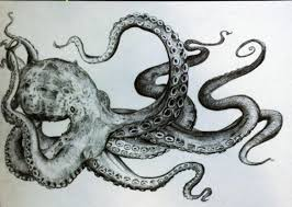 Small Picture Coloring Page Octopus Drawings Pinterest Tattoos Tumblr Step By