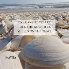 sea shell quotes sea shell quotes major magdalene project org