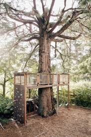 Awesome tree house platform with climbing wall