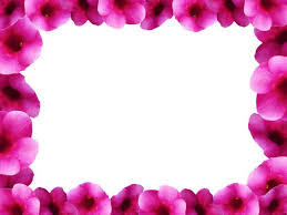 Small Picture Free stock photos Rgbstock Free stock images Floral Border 8