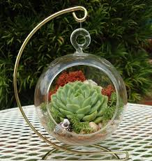 ... Large size of Decorative colorful terrarium original house plant decor  garden hanging basket gift box for ...
