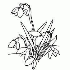25 Ontwerp Lente Bloemen Afbeeldingen Kleurplaat Mandala
