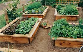 garden beds. learn how to build a raised garden bed beds n