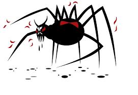 Afbeeldingsresultaat voor spider flames