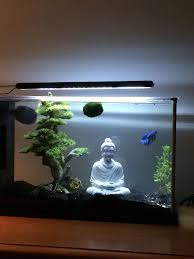 Indoor Aquarium Design Stunning Aquarium Design Ideas For Indoor Decorations14