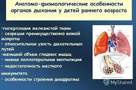 Курсовая работа Патология дыхательной системы купить заказать  Дипломная работа заболевания дыхательной системы
