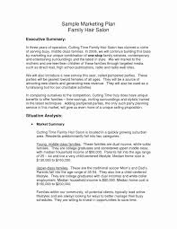 Format For An Executive Summary Salon Business Plan Example Ir Format Template Pdf Sample