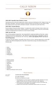 Social Worker Resume Samples VisualCV Resume Samples Database Best Social Work Resume Skills