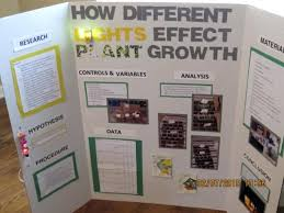 Science Fair Poster Board Layout Science Fair Boards Designs For