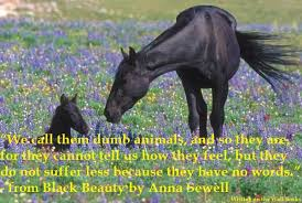 Anna Sewell Black Beauty Quotes Best of Black Beauty Quote Writing On The Wall Books