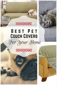 The Best Couch Covers and Sofa Shield for Homes with Dogs