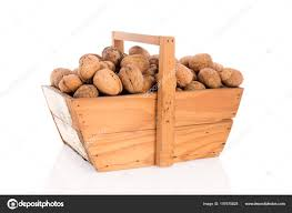 wooden harvest baskets full walnuts isolated white background stock photo