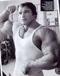 Arnold Gym Workout Chart Arnold Schwarzeneggers Workout Routine For The 1975 Mr