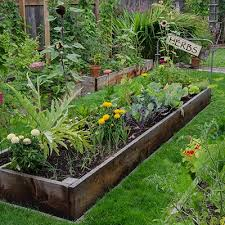 build a garden. Beautiful Garden One Easy Way To Help Educate And Encourage Children Eat Healthy Locally  Grown Fruits Vegetables Is Have A Garden You Canu0027t Get More Local Than  And Build A Garden