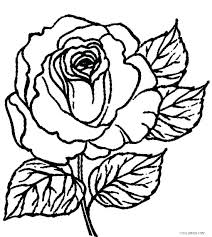 Rose Flower Colouring Pages Rose Flower Coloring Page Rose Flower
