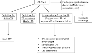 Pathophysiology Of Pulmonary Tuberculosis In Flow Chart Chest Tuberculosis Radiological Review And Imaging