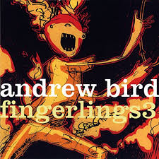 Image result for andrew bird i want to see pulaski at night album