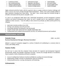 Executive Resumes Templates Building A Better Resume Tax Auditor