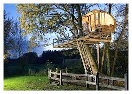 basic tree house pictures. Treehouse Plans Free Awesome Standing Tree House With Lovely Of Simple Designs Basic Pictures
