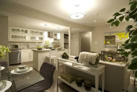 Basement Apartment Design Ideas Style Custom Design