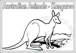 Australian Animal Coloring Pages Free Printable Farm Porongurup
