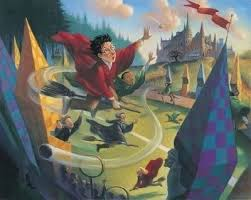 harry potter quidditch deluxe giclée on paper by mary grandpré