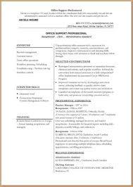 10 Free Executive Resume Templates Microsoft Word Skills Based