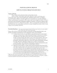Assignment Essays Writing Assign Project International