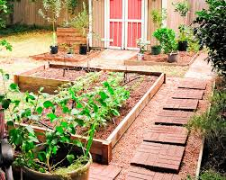 Small Picture Vegetable Flower Container Gardening Ideas