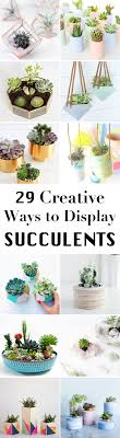 29 DIY Succulent Planter Ideas: Creative Ways to Display Succulents