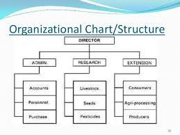 Organizational Chart Business Management Organizational