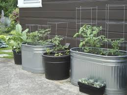 vegetable garden container ideas front yard ideas with rocks best plants for rock garden