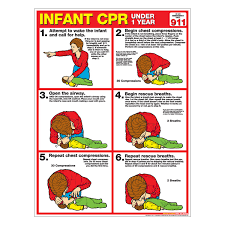 Infant Choking Chart Cpr Chart Infant Laminated