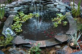small pond fountain