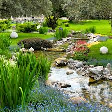 Small Picture Best 25 Backyard stream ideas on Pinterest Garden stream Pond