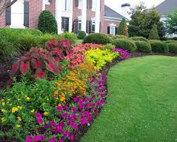 Small Picture Backyard flower garden ideas outside plant designs Pinterest