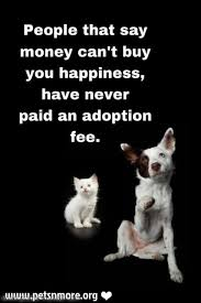 animal rescue quotes and sayings. Animal Dog Cat Pet Inspiring Quotes For Lovers Rescue And Sayings
